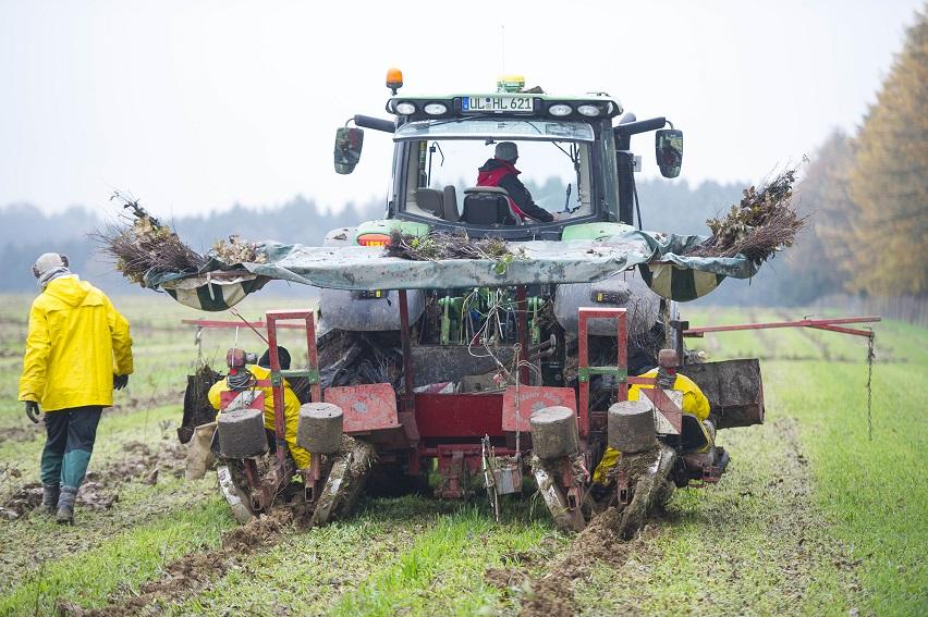 Bermaringen Ökologische Ausgleichsmaßnahmen für den Bau der Neubaustrecke Wendlingen - Ulm