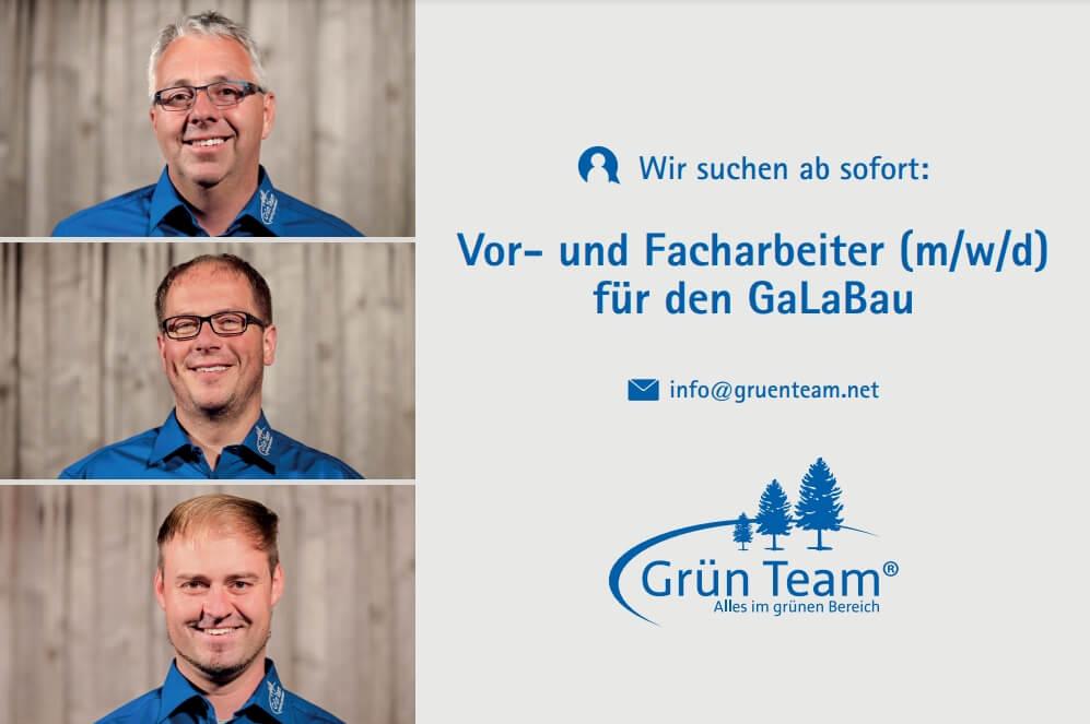 Stellenanzeige Grün Team